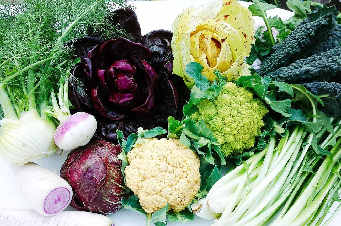 大紺屋農園のイタリア野菜
