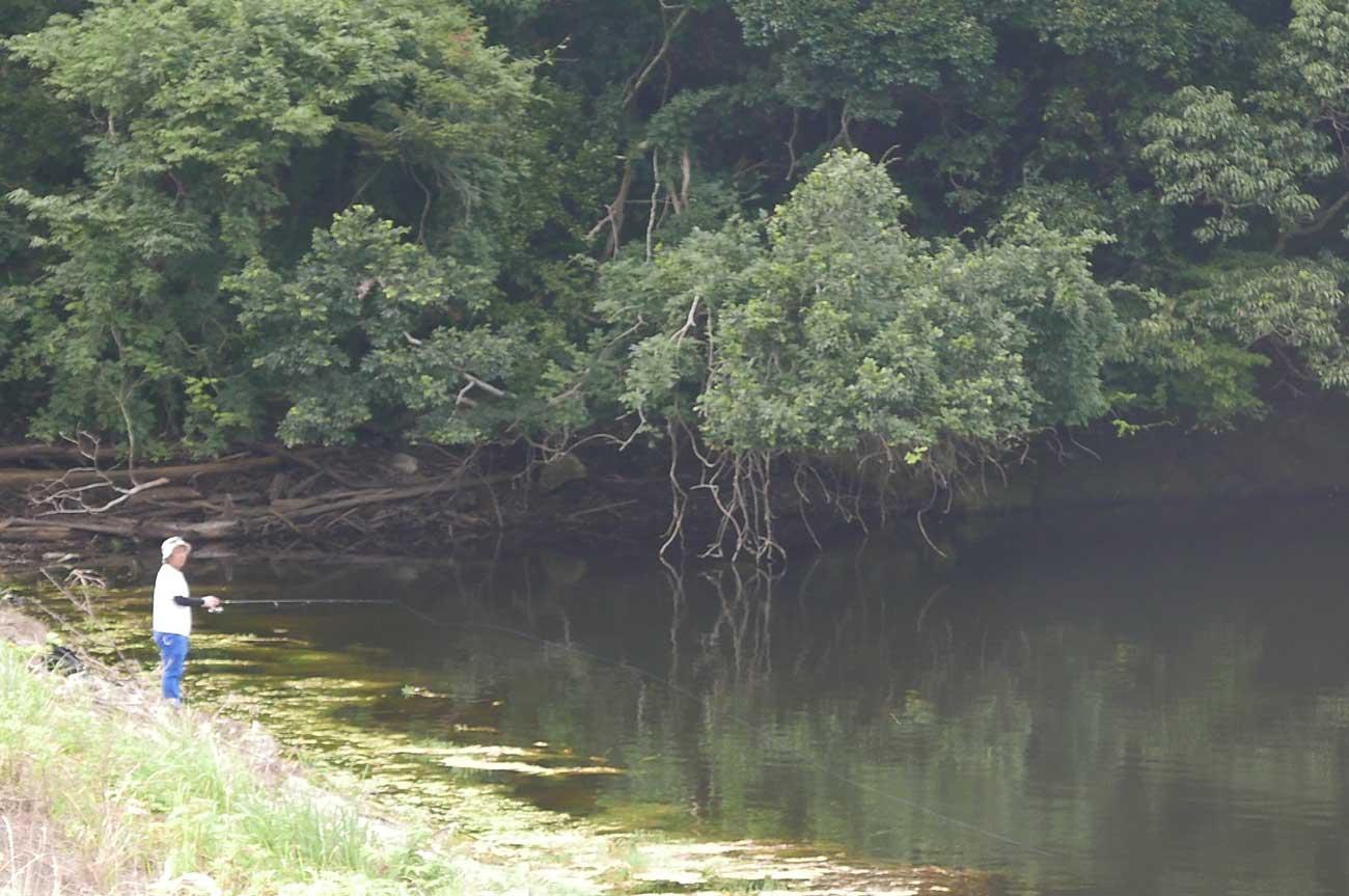 堰堤付近の釣り人