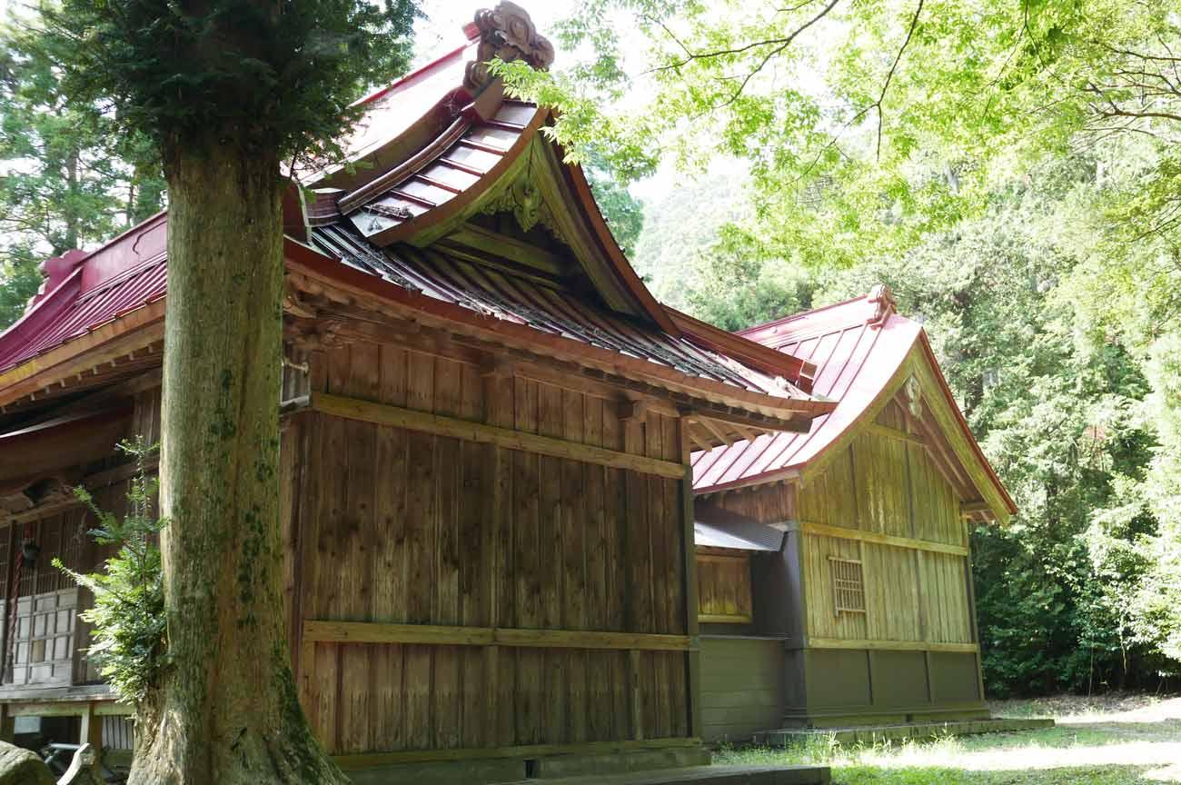 拝殿と本殿(右から撮影)