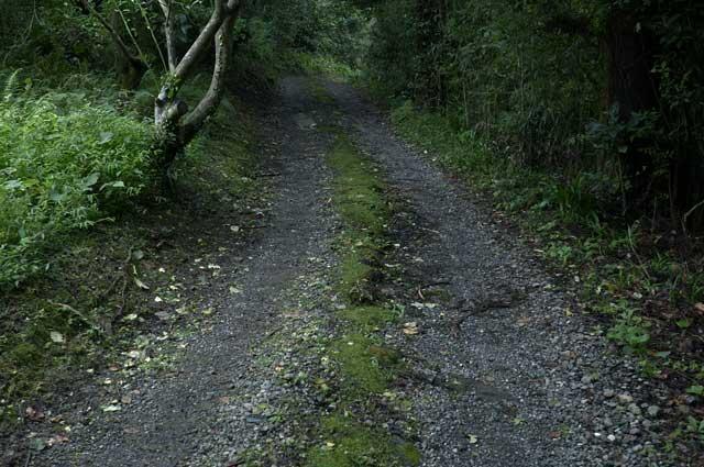 駐車場からの細い道