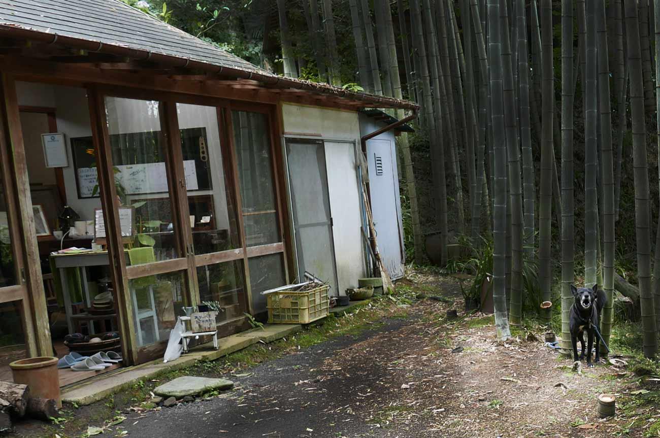 笹谷窯(ささやがま)/Café SASAYA(かふぇささや)の店舗外観
