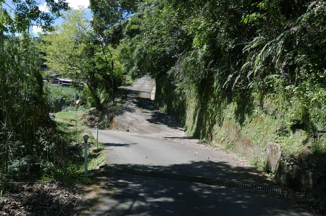 参道入口の坂道