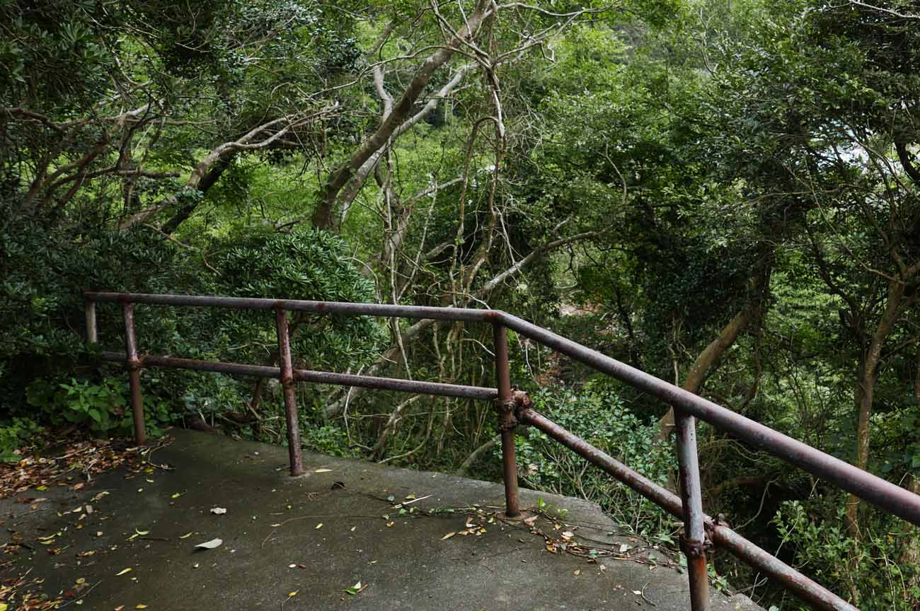 九頭竜神社の境内