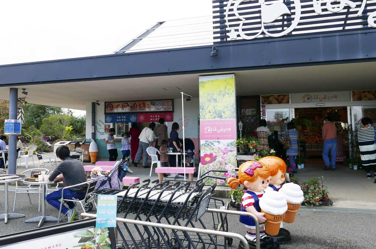 おさかな丼屋 とと丸の店舗外観