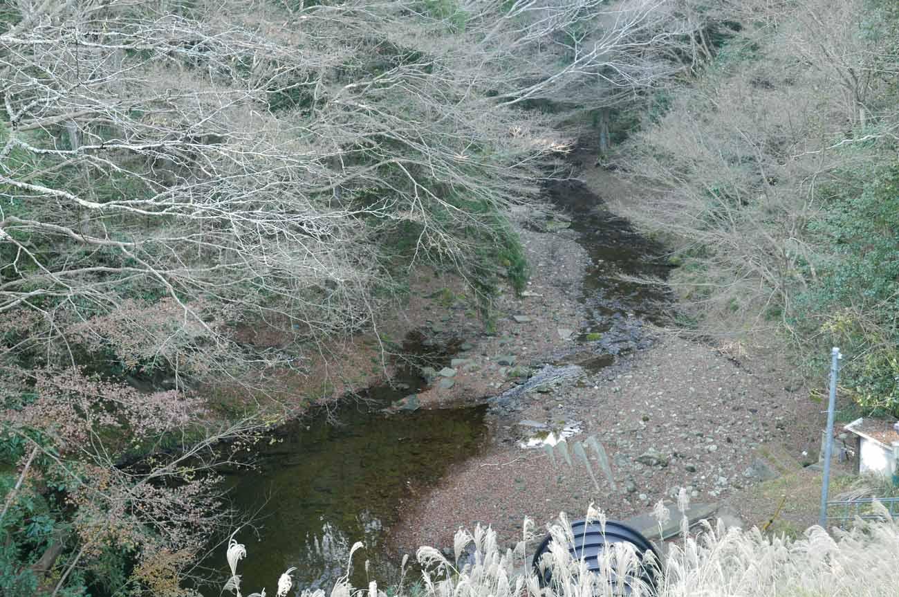 橋の上から見た小櫃川