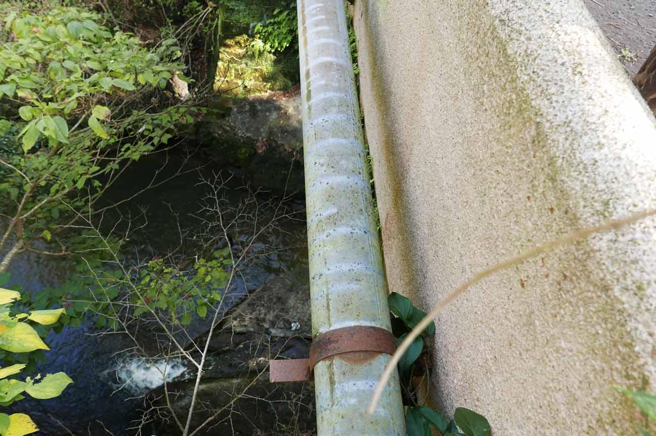 巴橋の下(下流側)