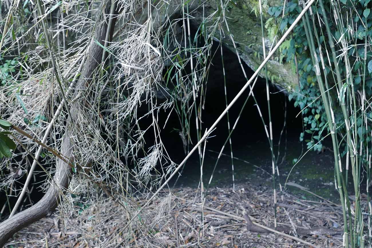 海食洞入口