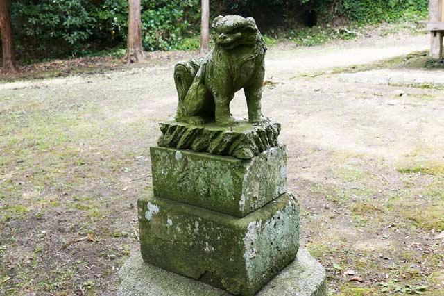 狛犬(左)