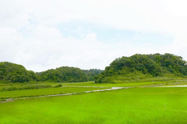 里山に囲まれた田園風景
