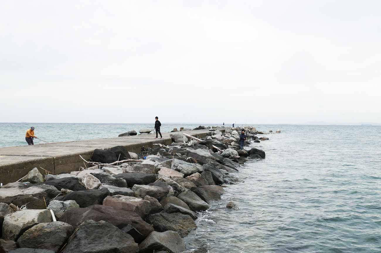 堤防右側のポイント