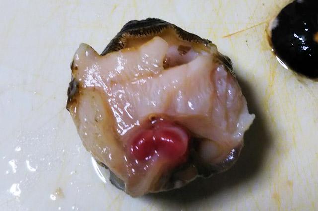 サザエの口の部分